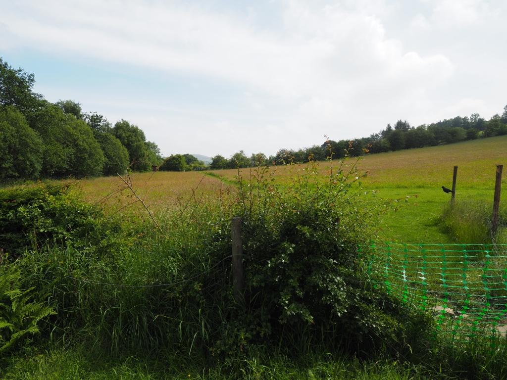 Open fields to rear